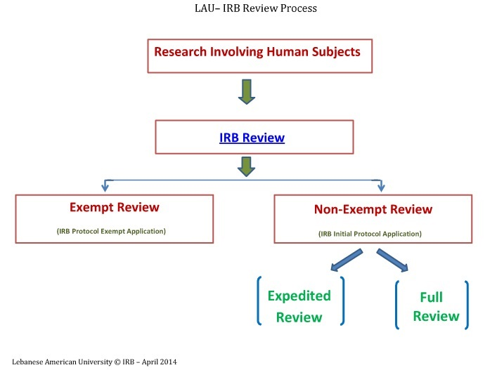 IRB  Review Process.jpg